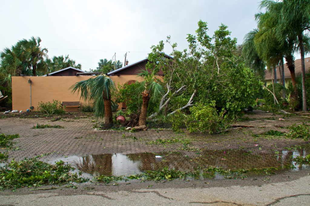 View of flooding, downed trees and property damage after hurricane irma in florida.